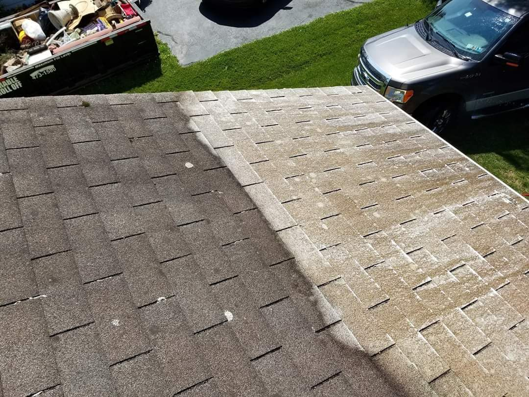 roof washing Hermitage